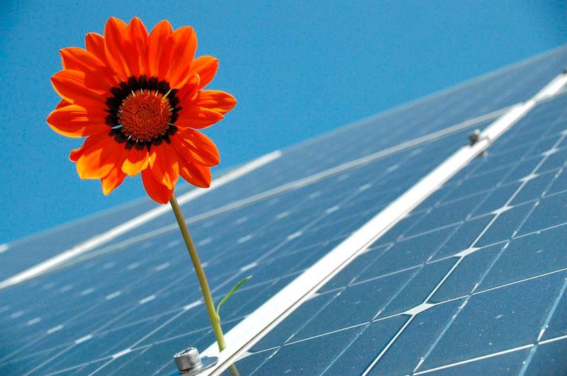 energia-solar-opcao-sustentavel